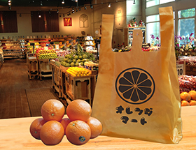 HDPE(カシャカシャ) オレンジ レジ袋 サイズ詳細! 片面1色のみ300枚から印刷可能